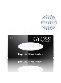 Express Gloss Fransar strl. M